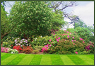 lawn services in Leesburg, Ashburn, Loudoun