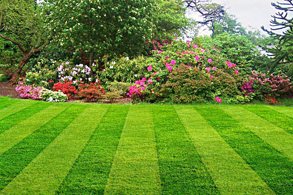 Loudoun Landscaping and Lawn Care