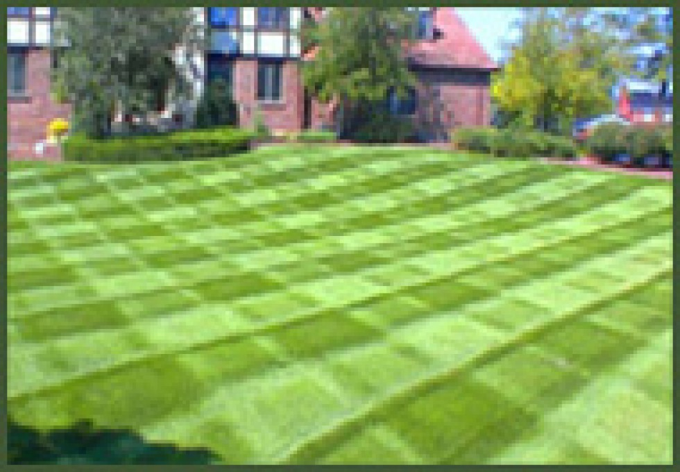 Property services landscape lawn mowing landscaping for Garden lawn care service