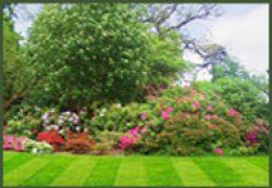 Lawn Mowing Services Loudoun
