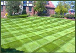 Lawn Mowing Landscaping Property Services Landscape
