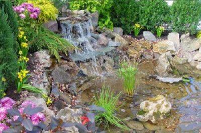 Let's Talk About Your Loudoun County Garden