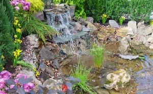 Leesburg garden, Loudoun county Flowers. Loudoun Landscape. Loudoun Lawn Service
