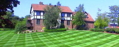 Want A Healthy Lawn?